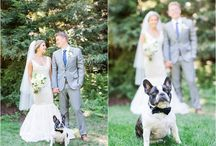 Dog Of Honor - Wedding Dogs - Blueberry Photography