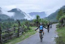 Life Cycling Green (LCG)