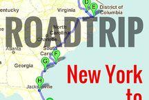 South Coast America Toad Trip