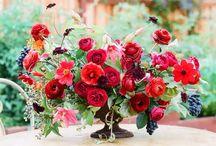 ДР маросейка красные розы