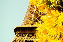 The lovely Eiffel Tower / by Donalda Alexander