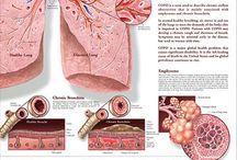 Medisch - Astma / COPD
