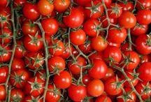 tomatoe growing