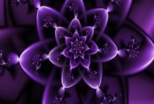 A Passion for Purples / All things in the color of purple, orchid, lavender, plum / by Debbie Mikolajczyk