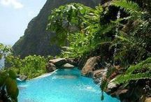 Tropical Vacations / That's Relaxation