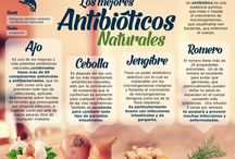 antibióticos