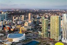 Livin Miami
