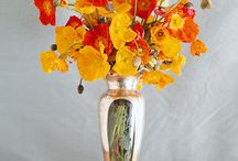 Flower: Poppies / by Rose of Sharon Floral Designs