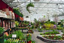 Gardens & nurseries