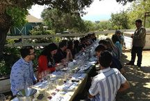 Wine on the 101 - Day Trip to Santa Barbara