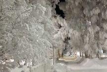 Näkymiä / White road