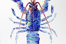 Marine Watercolor Print & Pattern