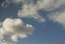 SORA -sky-