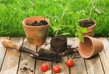 Gardens and Farming