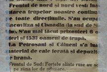 100 de ani de la intrarea României în Primul Război Mondial / 1916 - 2016