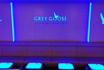 Grey Goose at FELIX
