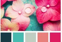 Гармония цвета