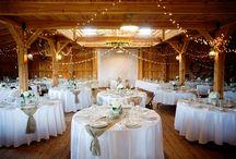 Prom Gold White Beige Decoration