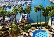 San Diego / by Rachel Whelton