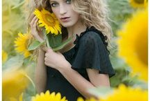 sunflower model