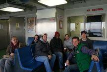 Staten Island Volunteering  / Habitat NYC Volunteers help Superstorm-Sandy affected homes in Staten Island / by Habitat for Humanity New York City