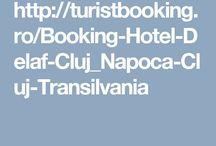 Hotel Delaf Cluj Napoca