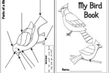 Coloring Pages & Crafts for Children