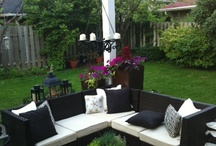 The backyard::