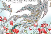 Chris Garver / Color odyssey