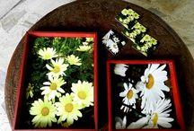 Bandejas. / Bandejas en tres tamaños, apilables. Se trabajan series temáticas, flores y follaje principalmente. Acabado mate o brillante sobre superficie dura a color.