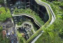 Architecture {Landscape/ Urban}