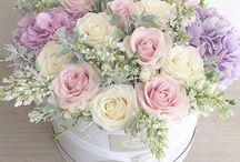 Round Box flowers