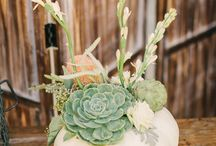 Table decorations / by Peg Granlund