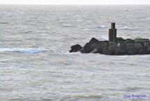 Aan zee / Noordzee