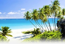 My Destination Barbados