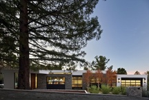 Architecture / by Carl J Dellatore