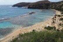 Hawaii / Some great travel pins of Hawaii.