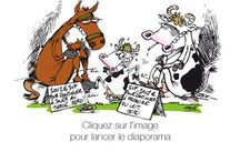 Humour Agricole  / by MFR Puy-Sec