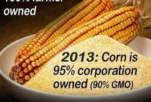 NO GMO's