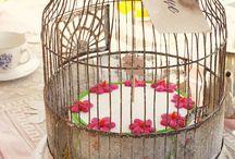 Birdcage / by Dianna Skaggs