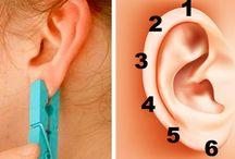 zdrowie ucho