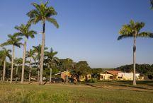 Fazenda Santa Teresa Hotel & SPA / Fazenda localizada em Bocaina-SP. Contatos:https://www.facebook.com/fazendasantateresa, @fsthotelspa, whatsapp (14)997286499