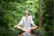 Meditation / by Yoga Girl