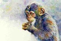 Animals / Watercolor