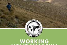 Neuseeland - Kia Ora ! / Erfahrungsberichte, Insidertipps und Must-sees für deine Neuseelandreise!