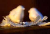 Svatby 2014 / Ukázka svatebních fotografií, které jsme měli možnost vytvořit v uplynulém roce