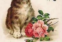 Vintage Style Cats / Cats with the old-time, vintage look. Illustrations, posters, etc. #vintagecats