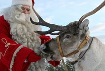 Santa Claus / Come and choose your way to visit Santa Claus in Rovaniemi: by reindeer, snowmobile, by car... Which way do you prefer?