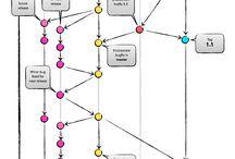 Programming Workflow