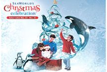 Perfect Orlando Holiday! / Countdown to #Christmas by celebrating all the family fun and holiday cheer #Orlando offers!  http://www.bestoforlando.com/events/holidays/